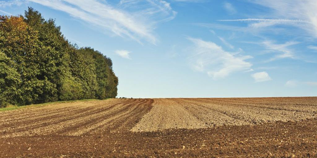 OBAVIJEST: Privremeno raspolaganje poljoprivrednim zemljištem u vlasništvu Republike Hrvatske