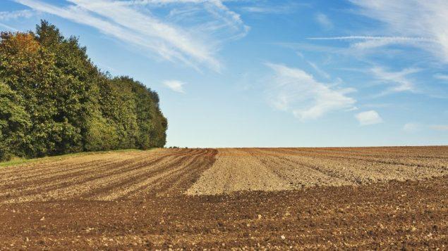 Obavijest o revalorizaciji zakupnine, naknade za korištenje  poljoprivrednog zemljišta u vlasništvu RH na području Općine Donji Kraljevec